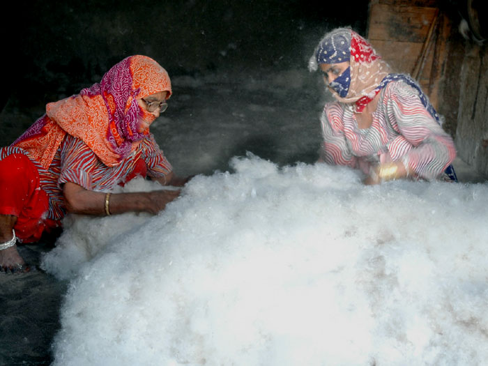 COZY VINTER - A HEAD, LADIES PREPARING COTTON 'RAJAIS'