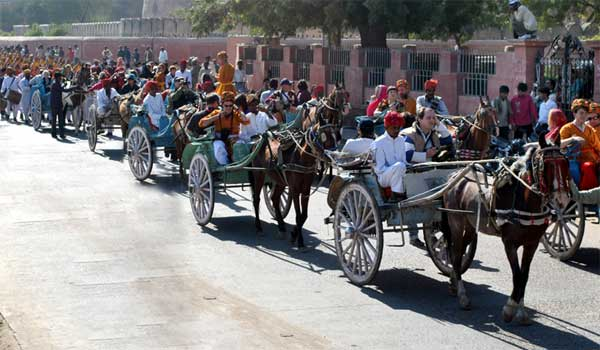 """Tanga """"Horse Cart"""" Ride during Camel Festival 2011 inauguration march held"""