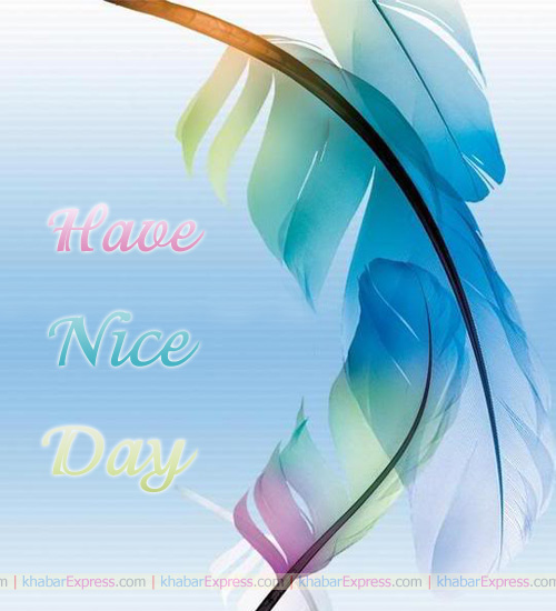 Have Nice Day