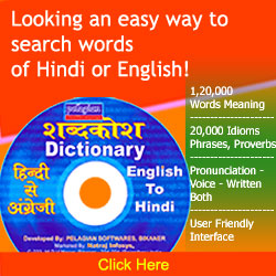 Pelagian e-Dictionary: Hindi to English and Enlgish Dictionary width=