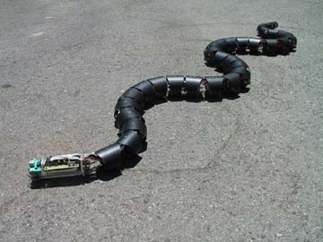 Indian Scientist Making Snake Robot