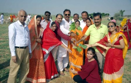 Tree Plantation by 51 Wedded Couple